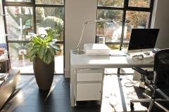 Plant-In-kantoor-Thuis