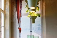 Plantenlamp-Met-Licht-Van-Twee-Kanten