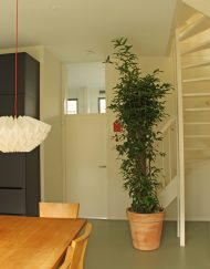 Bloempot-Terracotta-Rood-met-schaduwplant