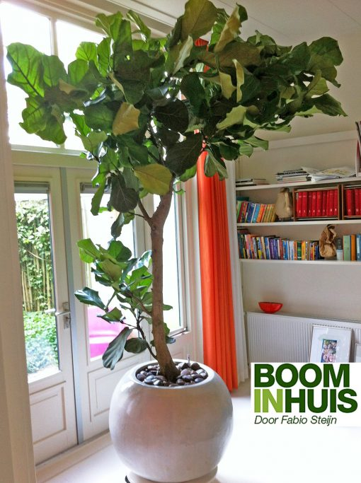 Bolvormige-Plantenbak-Wit-Aardewerk-Keramiek