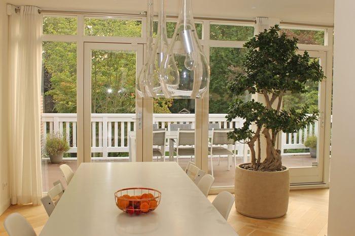Bonsai-in-bijzondere-plantenbak