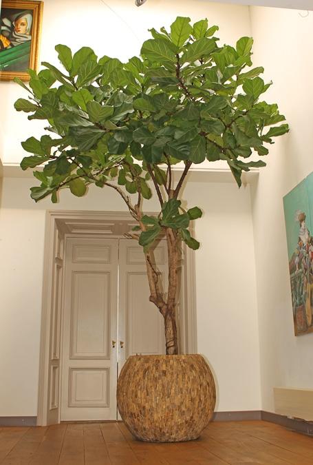 Boom-In-Huis-Handgemaakte-Houten-Plantenbak