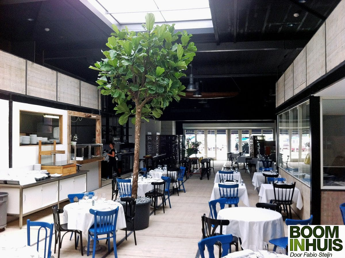 Boom-In-Restaurant-Goedkope-Plantenbak