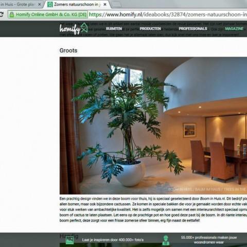 Homify-Boom-In-Huis-Blog