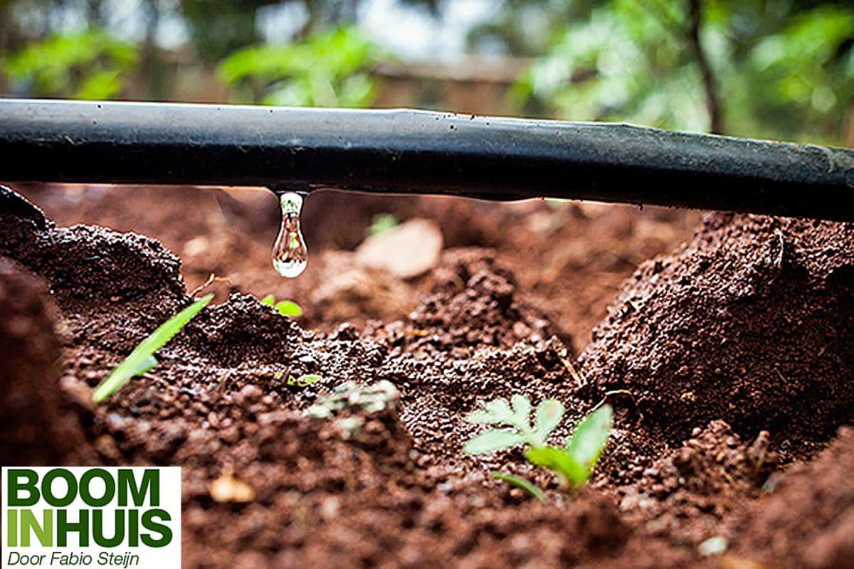 Irrigatie-watergeef-systeem-planten