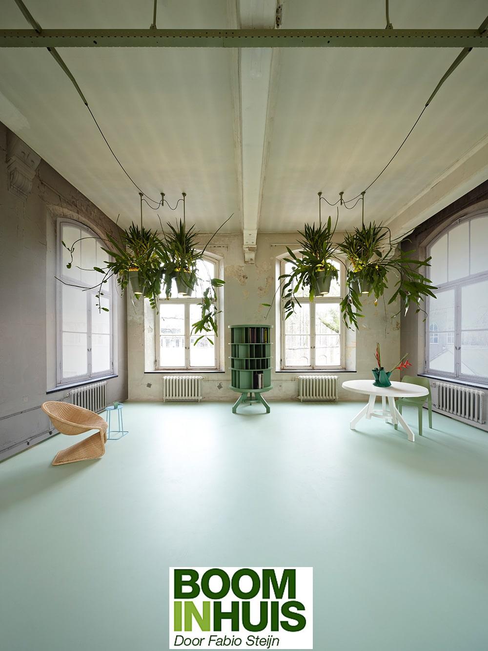 Portfolio bomen plantenbakken kamerplanten online kopen for Interieur architectuur
