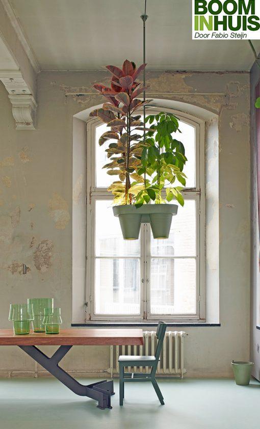 Lamp-Met-Planten-Kamerplanten-Groen