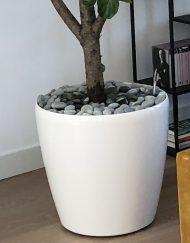 Plantenbak-Kunststof-Rond-wit