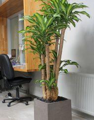 Plantenbak vierkant handgemaakt aardewerk