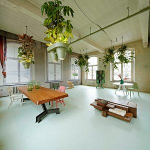 Plantenlamp-Styling-Met-Kamerplanten
