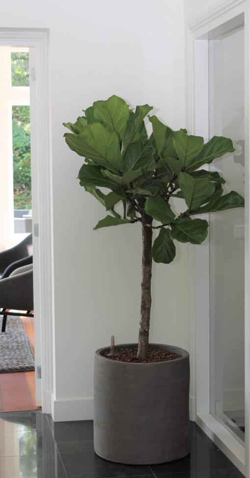 ronde plantenpot cilindervormig handgemaakt aardewerk