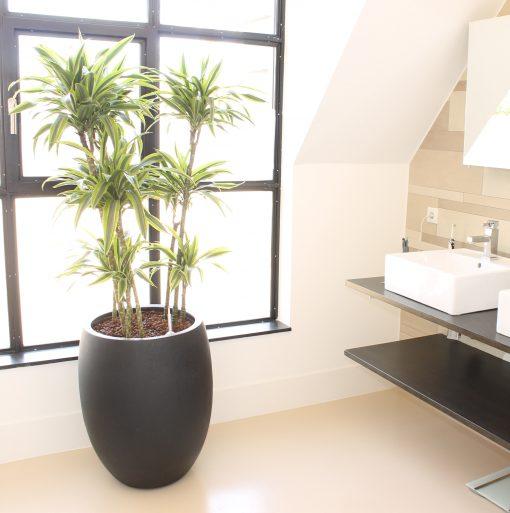 plantenbak zandsteen ballonvormig hoog antraciet badkamer
