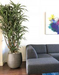 Plantenpot zandsteen grijs