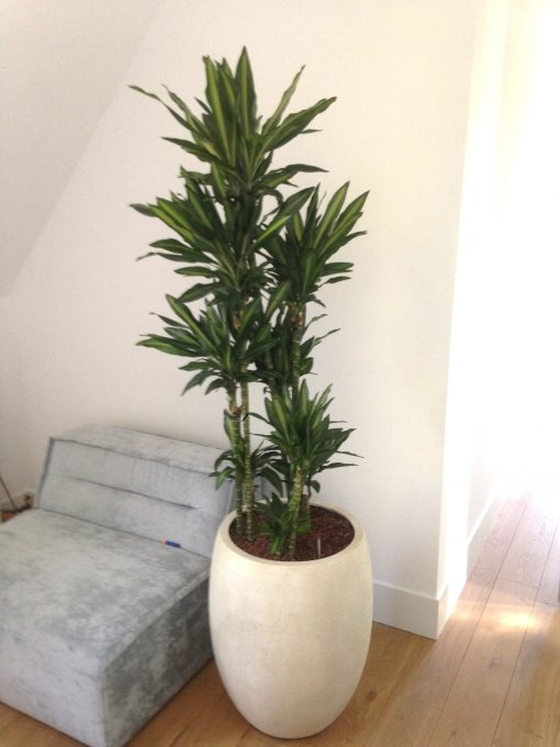 Plantenbak zandsteen offwhite