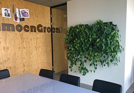 Plantenwand - Groene muur