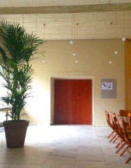 Palmboom in huid op schaduw plek