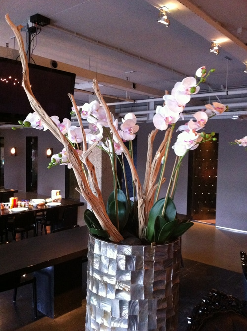 Zijdeplant-orchidee-met-zeehout-siersteen-bw